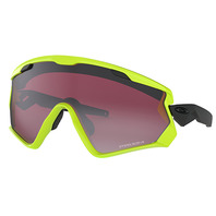 OAKLEY WIND JACKET® 2.0 PRIZM 色控制科技